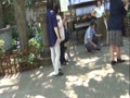あじさい祭り 白山神社 2017年6月16日